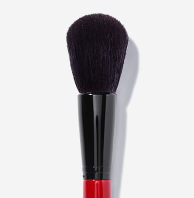 Face & Cheek Brush #2